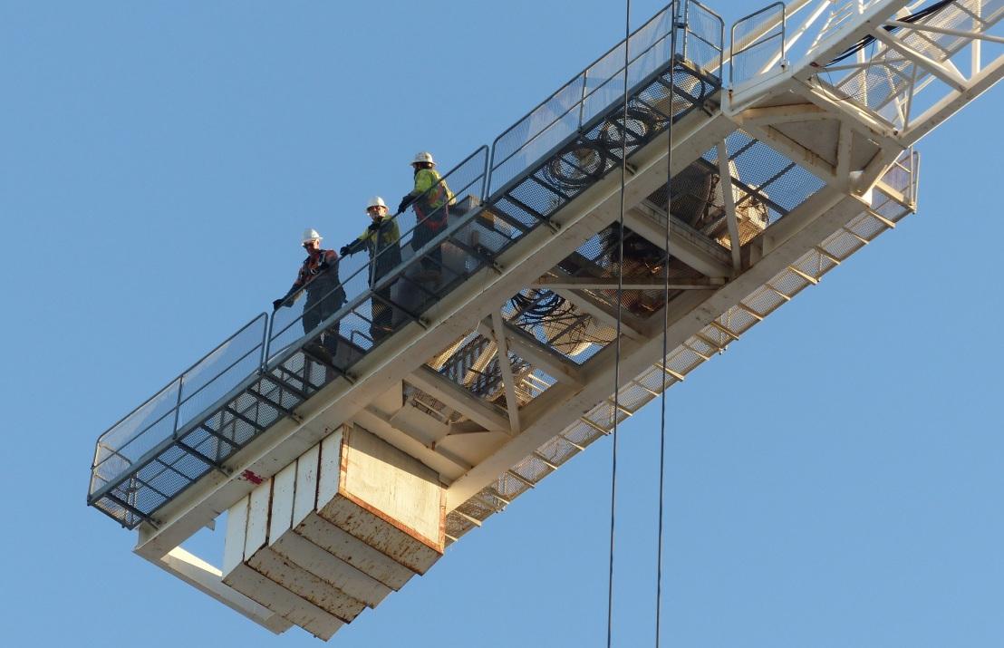090817 crane1